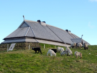 The Chieftain's Longhouse At Borg