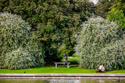 A girl reads by the lake at UCD