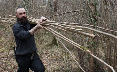 Gathering Hazel rods in a coppiced woodland in Co. Offaly