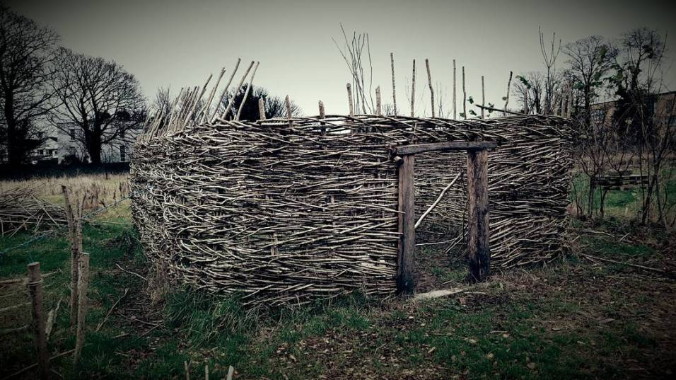 Viking house in progress at UCD Centre for Experimental Archaeology